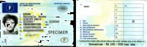 La carte de qualification conducteur